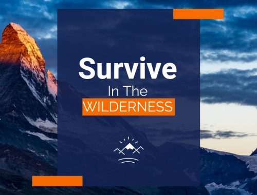 Surviving In The Wilderness: Camping Tips